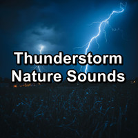 Nature - Thunderstorm Nature Sounds