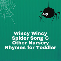 Itsy Bitsy Spider - Wincy Wincy Spider Song & Other Nursery Rhymes for Toddler