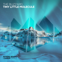 The Blizzard - Tiny Little Molecule
