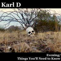 Karl D / - Evening / Things You'll Need to Know