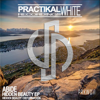 Abide - Hidden Beauty