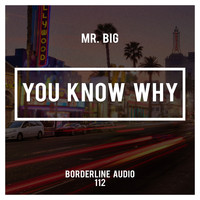 Mr. Big - You Know Why