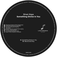 Sinan Kaya - Something Divine In You
