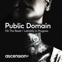 Public Domain - Hit The Reset / Lethality In Progress