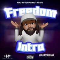 Freedom - Intro (Blame It On NaNa) (Explicit)