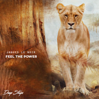 Jaques Le Noir - Feel The Power