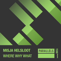 Misja Helsloot - Where Why What