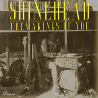 Shinehead - The Makings Of You