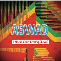 Aswad - I Need Your Loving (Live)