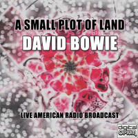 David Bowie - A Small Plot Of Land (Live)