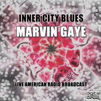 Marvin Gaye - Inner City Blues (Live)