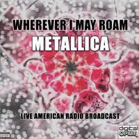 Metallica - Wherever I May Roam (Live)