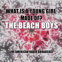 The Beach Boys - What Is A Young Girl Made Of? (Live)