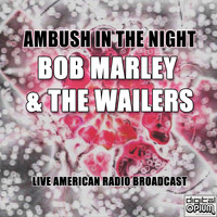 Bob Marley & The Wailers - Ambush In The Night (Live)