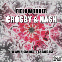 Crosby & Nash - Fieldworker (Live)
