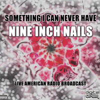 Nine Inch Nails - Something I Can Never Have (Live)