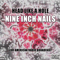 Nine Inch Nails - Head Like A Hole (Live)