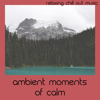 Relaxing Chill Out Music - Ambient Moments Of Calm