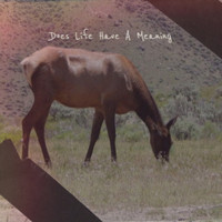 Various Artist - Does Life Have A Meaning