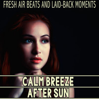 Various Artists - Calm Breeze - After Sun