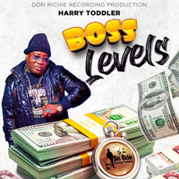 Harry Toddler - Boss Levels