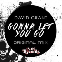 David Grant - Gonna Let You Go