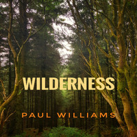 Paul Williams - Wilderness