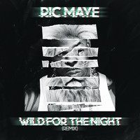 Busta Rhymes - Wild For Da Night (Ric Maye Remix [Explicit])