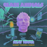 Glass Animals - Heat Waves (Sonny Fodera Remix)