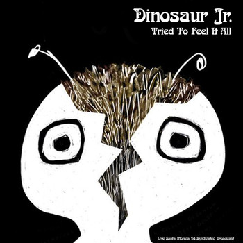Dinosaur Jr. - Tried To Feel It All (Live 1994)