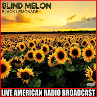 Blind Melon - Black Lemonade (Live)