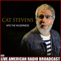Cat Stevens - Into The Wilderness (Live)