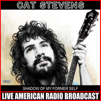 Cat Stevens - Shadow Of My Former Self (Live)