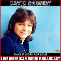 David Cassidy - Make It Work For Love (Live)
