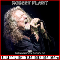 Robert Plant - Burning Down The House (Live)