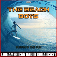 The Beach Boys - Surfin In The Sun (Live)