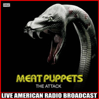 Meat Puppets - The Attack (Live)
