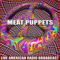 Meat Puppets - High Enough To Fly (Live)