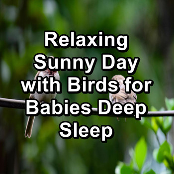 Nature - Relaxing Sunny Day with Birds for Babies Deep Sleep