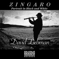 Dave Liebman - Zingaro (Portrait in Black  and White) (feat. Vic Juris, Tony Marino, Jamey Haddad & Café)