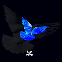 Blue w3rD, DJ Sylo - AZUL(International Blue) (Explicit)