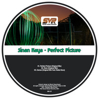 Sinan Kaya - Perfect Picture