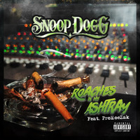 Snoop Dogg - Roaches In My Ashtray (feat. ProHoeZak) (Explicit)