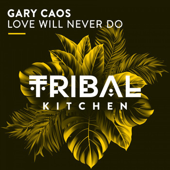 Gary Caos - Love Will Never Do