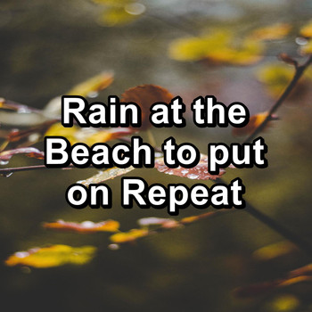 Nature - Rain at the Beach to put on Repeat