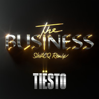 Tiësto - The Business (SWACQ Remix)