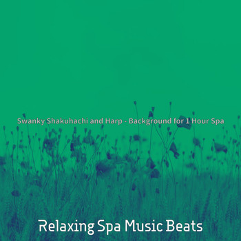 Relaxing Spa Music Beats - Swanky Shakuhachi and Harp - Background for 1 Hour Spa
