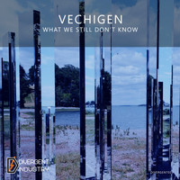 Vechigen - What We Still Don't Know