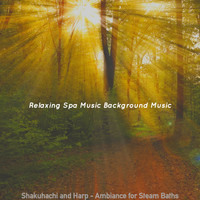 Relaxing Spa Music Background Music - Shakuhachi and Harp - Ambiance for Steam Baths