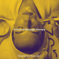 Relaxing Spa Music Bgm - Echoes of Massage Therapy